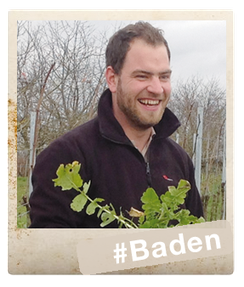 Baden - Klenert