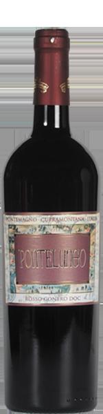 2017 Pontelungo Rosso Conero DOC, Piersanti